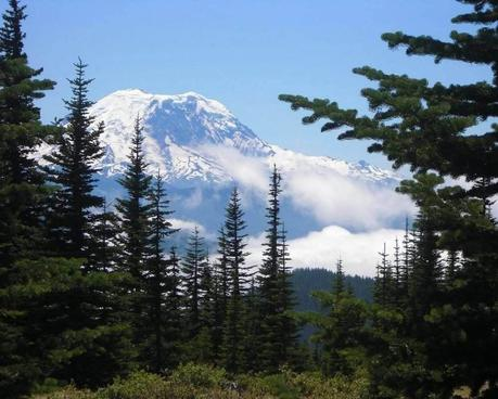 7 Best Mount Rainier Hiking Trails for Every Adventurer to Explore