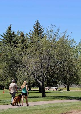 Naming Trees