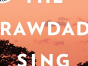 Some Thoughts Where Crawdads Sing Delia Owens