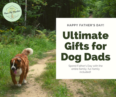 Happy Father's Day Pawdre: 5 Best gifts for Dads who love their dogs