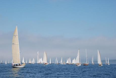 Wilder Pictures + Musings: The Eggemoggin Reach Regatta 2011