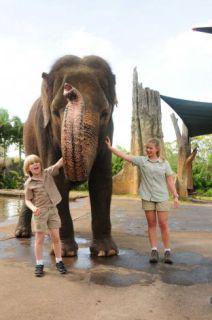 Growing Up Wild, starring Robert and Bindi Irwin: image via mysa.com