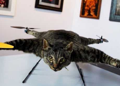 Orvillecopter.