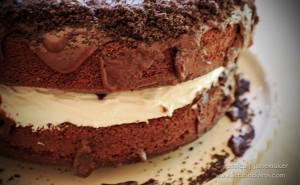 Best Cake Recipes: Chocolate Marshmallow Cake