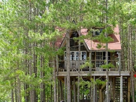 Treehouse view with front porch