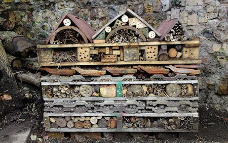 Welcome To The Bee Hotel