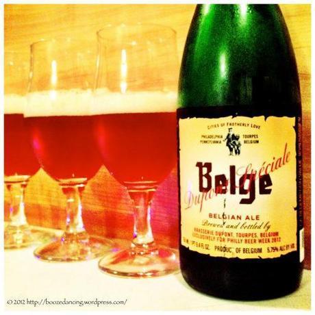 Beer Review – Brasserie Dupont Spéciale Belge