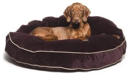 Choosing the Right Bed for Your Dog