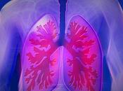 Ways Keep Your Lungs Healthy Whole