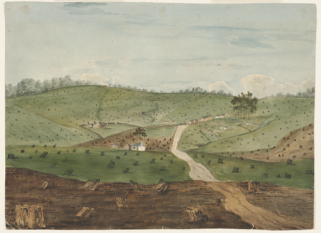 A brief history of environmentalism in Australia since European invasion