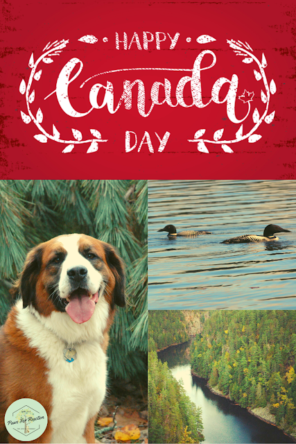 How to celebrate Canada Day during the global COVID-19 pandemic