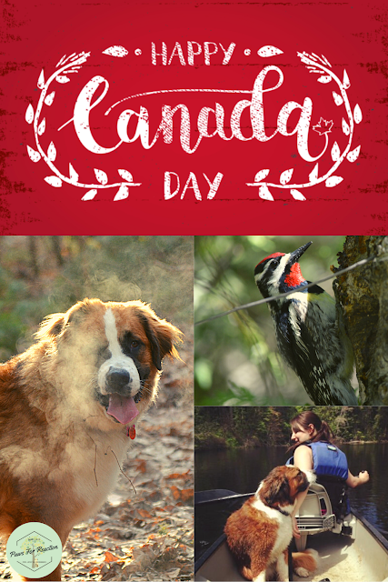 Happy Canada Day: How to celebrate Canada Day during the global COVID-19 pandemic