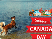 Happy Canada from Paws Reaction