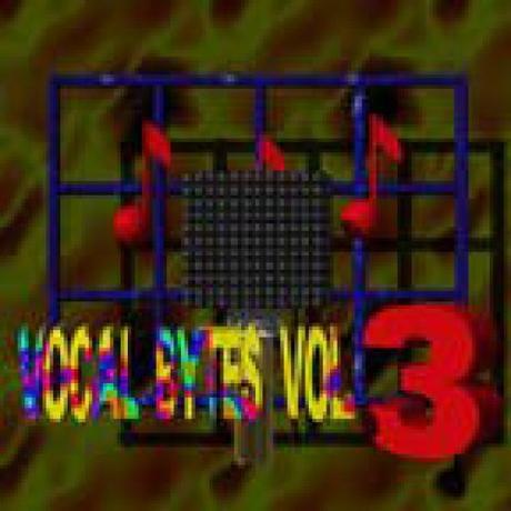 Midimark Vocal Bytes v3.0 WAV