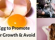 Eggs Promote Hair Growth Avoid Loss