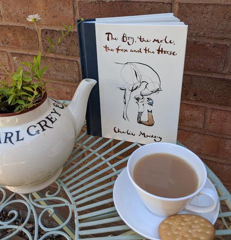 the boy mole fox horse illustrated book review