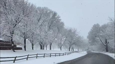 W For Winter Wonderland