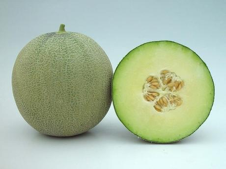 SkyRocket Melon
