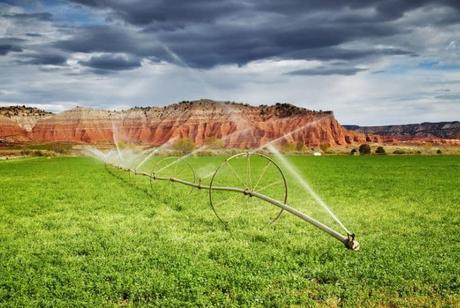 hosepipe-irrigating-fields-farms