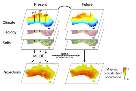 History of species distribution models