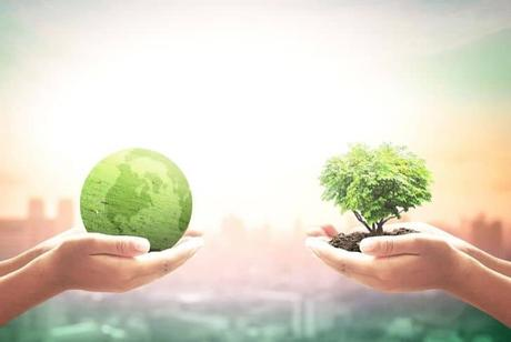 woman-holding-global-environment-sustainable-earth-globe
