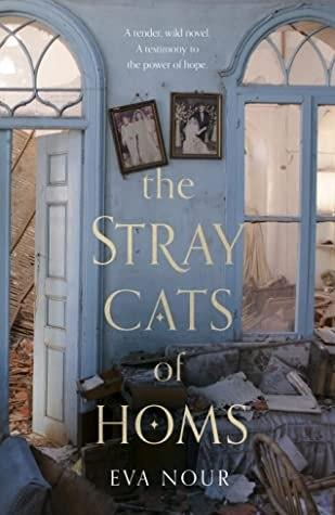 The Stray Cats of Homs by Eva Nour