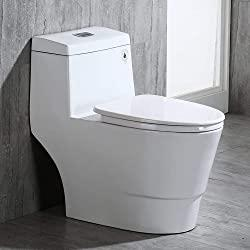 The Best Dual Flush Toilets