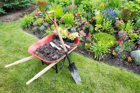 photo-garden-work-being-done-landscaping-manure