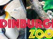 Edinburgh Vlog