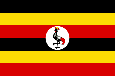 Uganda's tourism private sector demands airport reopening