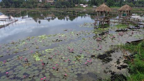 Travel Guide Budget and Itinerary for Lake Sebu