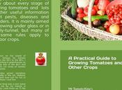 Help Design Cover Tomato Growing Book