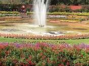 Quick Guide Mughal Garden, Rashtrapati Bhavan Delhi