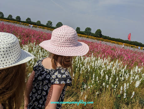 Confetti Flower Field at Wick, Pershore – August 2020