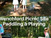Wenchford Picnic Site REVIEW Playing Paddling Forest Dean Family Days
