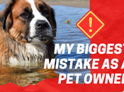 Coming Clean: Biggest Failure Owner #NationalPetInsuranceMonth