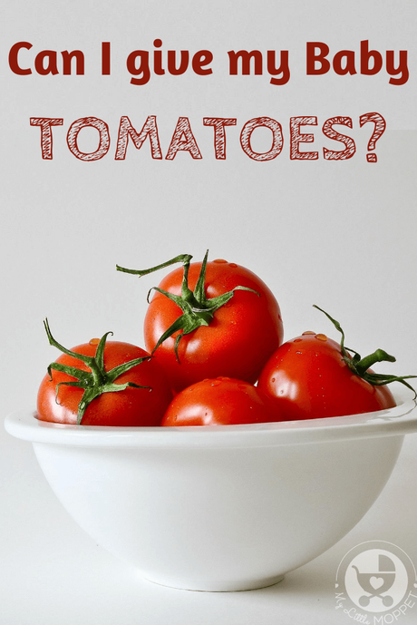 Whether you consider it a fruit or vegetable, there's no doubt that tomatoes are super healthy. So now the question is this: Can I give my Baby Tomatoes?