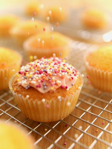 Eggs and Flour:  The Difference Between Yellow and White Cake