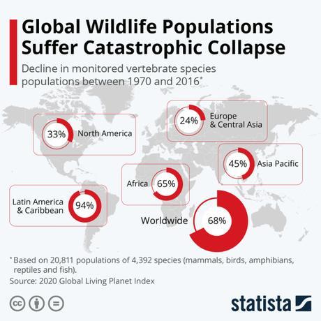 Wildlife Decline Continues