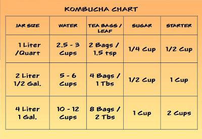 Original organic kombucha
