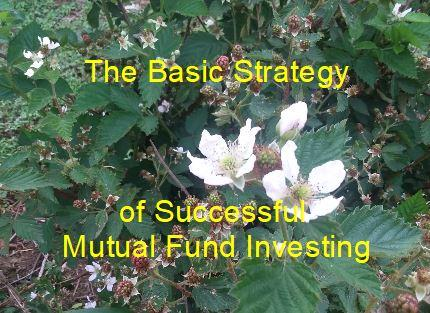The Basic Strategy of Successful Mutual Fund Investing