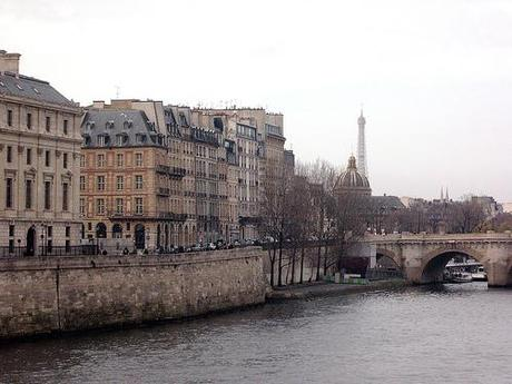 Eiffel Tower from the Siene