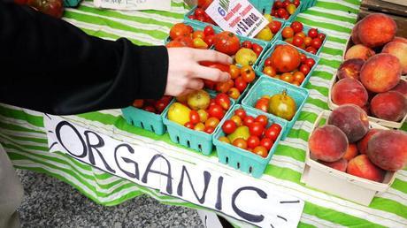 Top 10 Reasons to Choose Organic Food