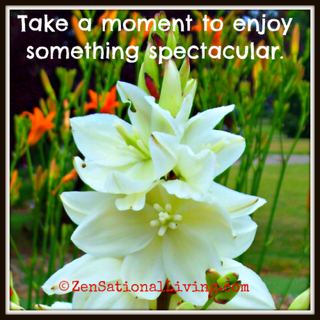 Allow yourself to relax for a moment.