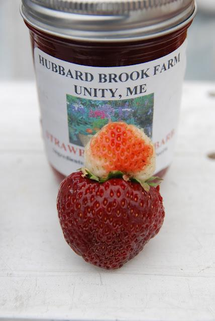 Wilder Pictures + Musings: Farmer's Market, Volume III (and) On Appreciating Being Weird