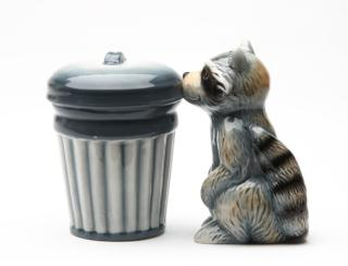 Raccoon and Trash Can Salt and Pepper Shakers