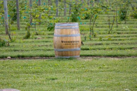 Wisconsin Wineries (10 of 46)