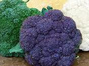 Sulforaphane Cancer