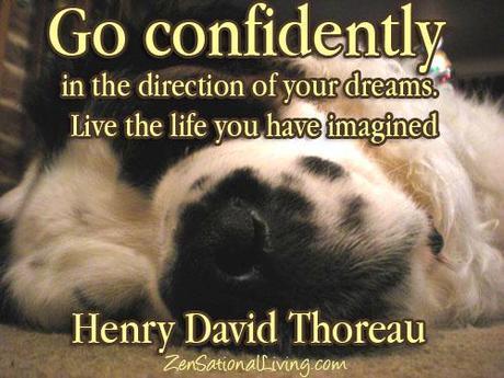 Go confidently.