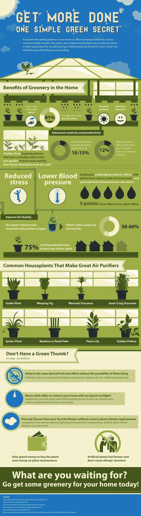 Infographic on the Benefits of Trees and Plants in the Home